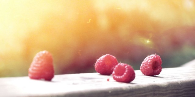 http://ad-hoc.bold-themes.com/agency/wp-content/uploads/sites/4/2014/12/berries1-640x320.jpg